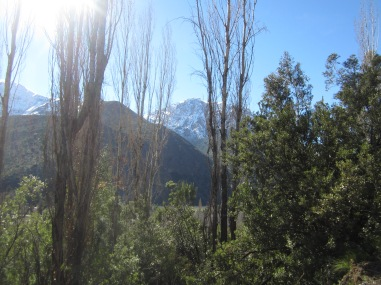 View in Andes
