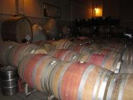 Winery in Casablanca Valley