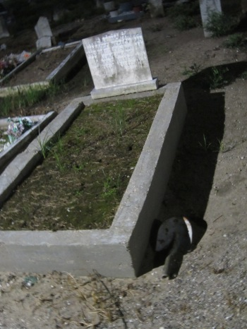 New Orleans cemetery with shovel