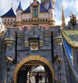 Disneyland castle closeup